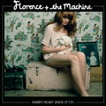 rabbit heart - florence-the-machine fan art