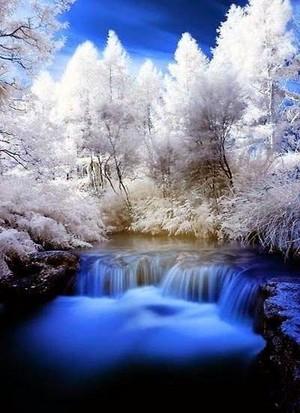 snow landscapes ❄️ ☃️