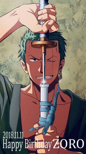 *Roronoa Zoro : One Piece*