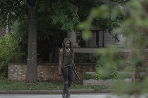 10x03 ~ Ghosts ~ Michonne