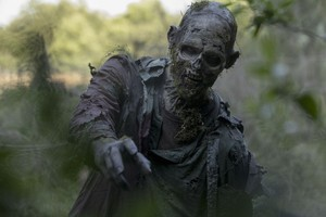 10x03 ~ Ghosts ~ Walker