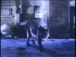 1991 Video, Black o White