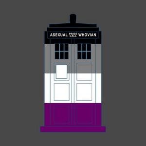 Ace TARDIS