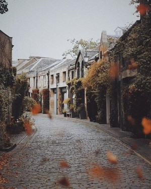 Autumn Aesthetic 🍂🎃🍁