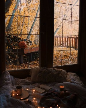 Autumn Aesthetic 🍂🎃🍁