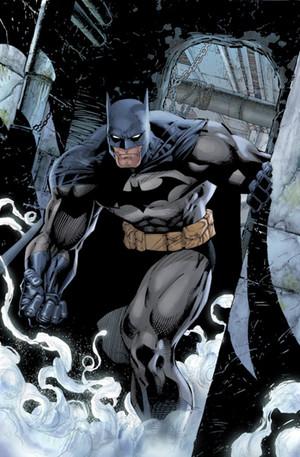 Người dơi / Bruce Wayne