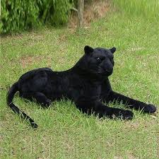 Black panther Plush Toy