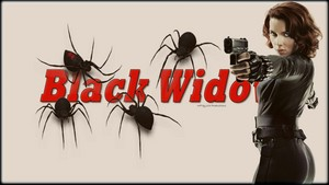 Black Widow 11