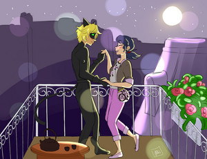 Chat Noir and Marinette