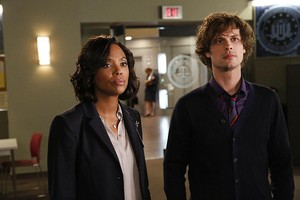 "Criminal Minds ~ 12x07 ""Mirror Image"""