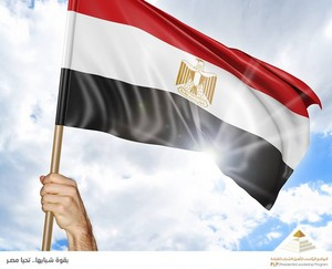 DON'T TOUCH MY EGYPT FLAGS