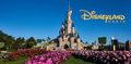 Disneyland Paris - disney photo