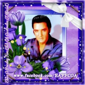 Elvis tagahanga creation