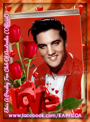 Elvis người hâm mộ creation