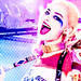 Harley Quinn - margot-robbie icon
