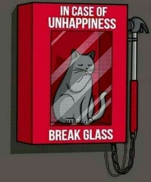 In Case Of Unhappiness...