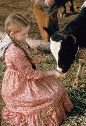 Laura Ingalls (Melissa Gilbert) Red print prairie dress -Costume oleh Richalene Kelsay