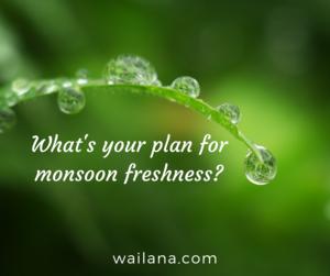 Monson Plan