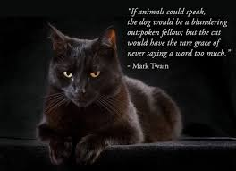 Quote Pertaining To Black Cats