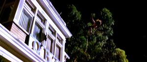 Sarah Michelle Gellar in Scream 2