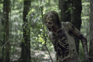 Season 10 ~ First Look ~ Walker