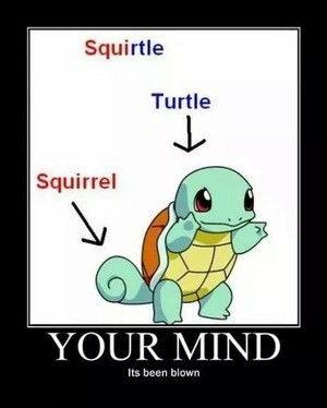 Squirtle is half squirrel half turtle