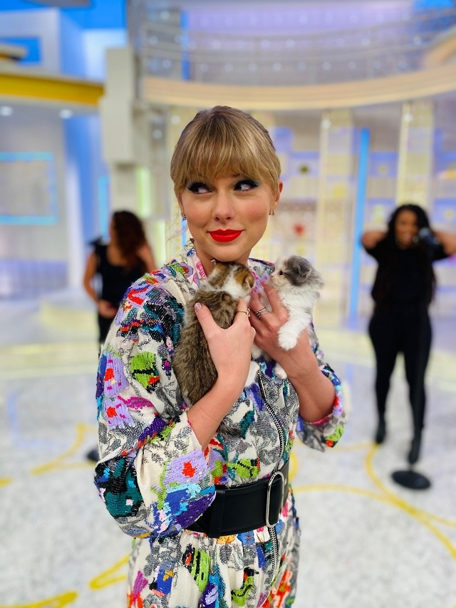 TAYLOR SWIFT AND TWO KITTENS