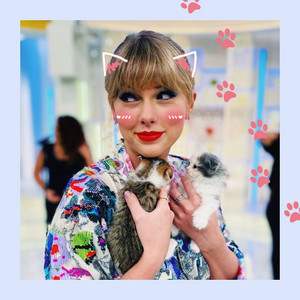 TAYLOR rápido, swift AND TWO gatitos