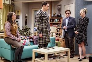 """The Big Bang Theory ~ 12x10 """"The VCR Illumination"""""""