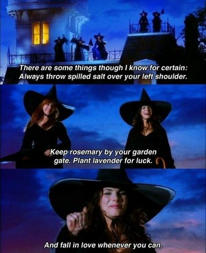 Witchy Vibes 🦇🖤🎃🍂🌙🕸️🕷️👻🌹