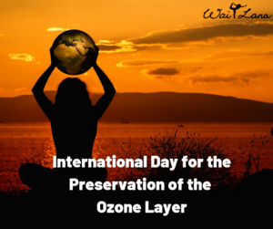 World Ozone Tag