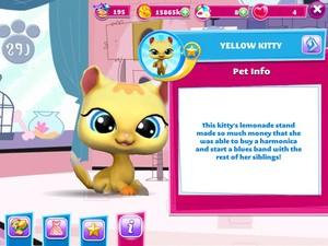 Yellow Kitty 2