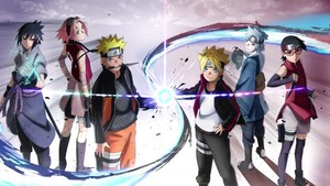 new team7 and old team7