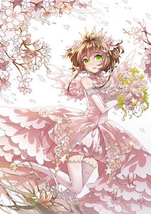sakura फूल