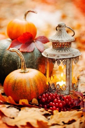 the beauty of autumn🍂❤️🎃🌆