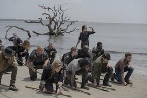 10x01 ~ Lines We पार करना, क्रॉस ~ Daryl