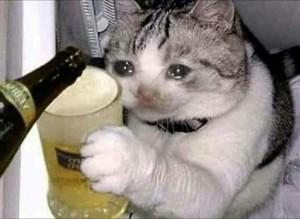 ネコ DRUNK