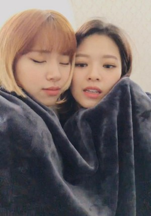 Chaeyoung and Jeongyeon