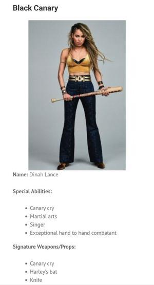 Character Bio ~ Dinah Lance