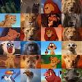 Characters From The Lion King Both Versions - disney photo