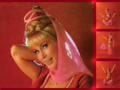 I Dream of Jeannie - barbara-eden wallpaper