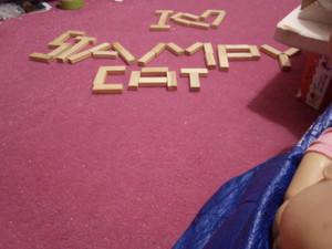I 🧡 Stampy cat