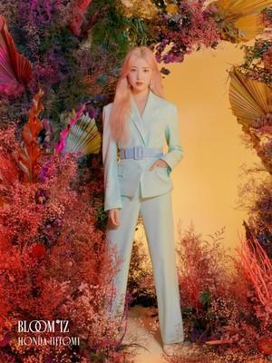 IZ*ONE - 1st Album [BLOOM*IZ] OFFICIAL PHOTO - Honda Hitomi