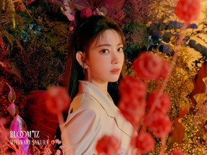 IZ*ONE - 1st Album [BLOOM*IZ] OFFICIAL bức ảnh 'I WILL' ver. - Miyawaki Sakura