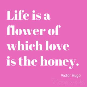 Cinta and crush Petikan for Valentine's hari mood ❤️