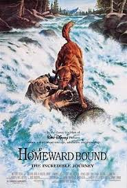 Movie Poster 1993 디즈니 Film, Homeward Bound: The Incredible Journey
