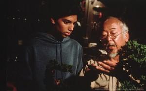 Mr Miyagi and Daniel
