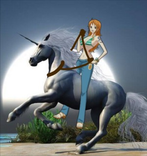 Nami had captured and tamed an Beautiful Wild White Unicorn