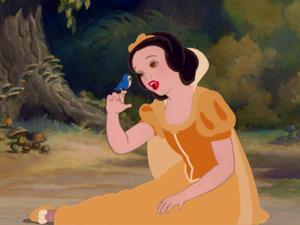 Snow White Belle colors