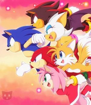 Sonic X Những người bạn
